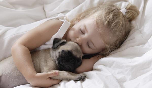 Cosa c'è di più bello, per chi ama gli animali, di dormire guancia a guancia con il proprio cane o gatto?