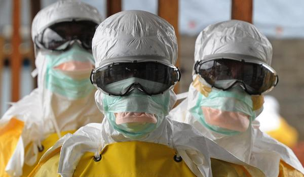 In Europa basso rischio di trasmissione dell'ebola a cani e gatti.