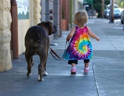 Il cane si accorge se sei inaffidabile.