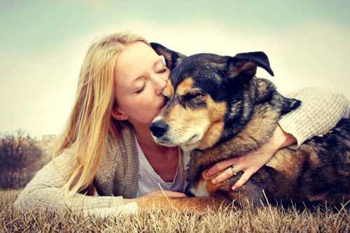 I cani capiscono le nostre emozioni - Michele d'Amato veterinario