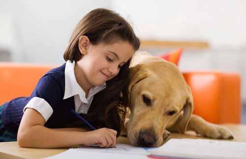 il ruolo degli animali nella crescita dei figli 01 - michele d-amato veterinario