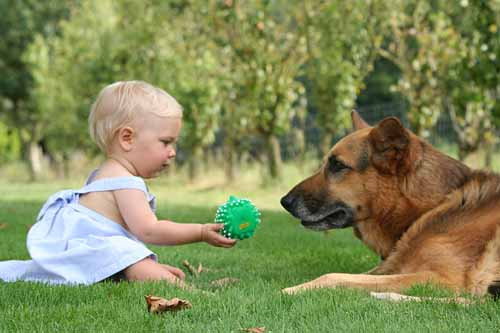 il ruolo degli animali nella crescita dei figli 02 - michele d-amato