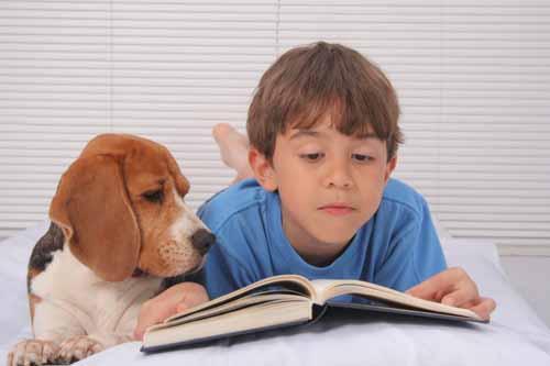 il ruolo degli animali nella crescita dei figli  03 - michele d'amato veterinario